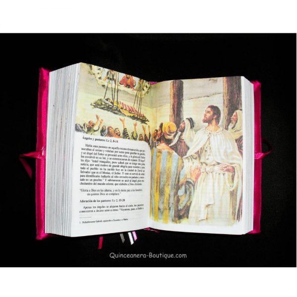 Bible - Inside View