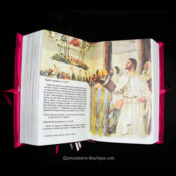 Bible - Inside View